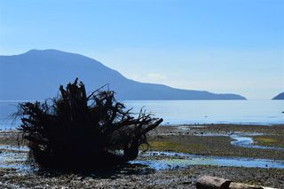 Photo 5: LOT 71 WEST BAY Road: Gambier Island Land for sale (Sunshine Coast)  : MLS®# R2313942