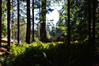 Photo 12: LOT 71 WEST BAY Road: Gambier Island Land for sale (Sunshine Coast)  : MLS®# R2313942