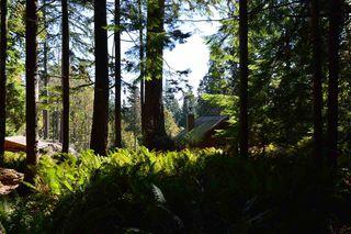 Photo 12: LOT 71 WEST BAY Road: Gambier Island Land for sale (Sunshine Coast)  : MLS®# R2313942
