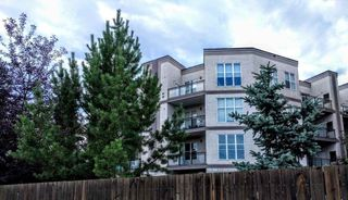 Main Photo: 223 4831 104A Street in Edmonton: Zone 15 Condo for sale : MLS®# E4139269
