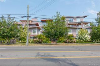 Photo 18: 101 1510 Hillside Ave in VICTORIA: Vi Oaklands Row/Townhouse for sale (Victoria)  : MLS®# 804115