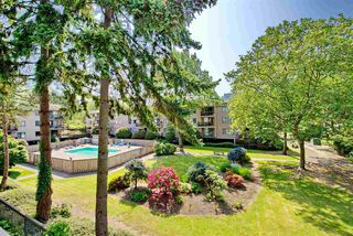 "Photo 13: 202 8511 ACKROYD Road in Richmond: Brighouse Condo for sale in ""Lexington Square"" : MLS®# R2376056"