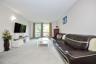 "Photo 12: 202 8511 ACKROYD Road in Richmond: Brighouse Condo for sale in ""Lexington Square"" : MLS®# R2376056"