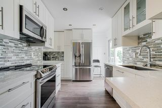 Photo 7: 11724 FURUKAWA Place in Maple Ridge: Southwest Maple Ridge House for sale : MLS®# R2385712