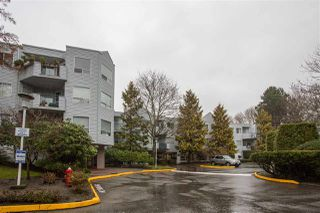 "Photo 13: 101 7760 MOFFATT Road in Richmond: Brighouse South Condo for sale in ""The Melrose"" : MLS®# R2386988"
