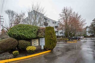 "Photo 14: 101 7760 MOFFATT Road in Richmond: Brighouse South Condo for sale in ""The Melrose"" : MLS®# R2386988"