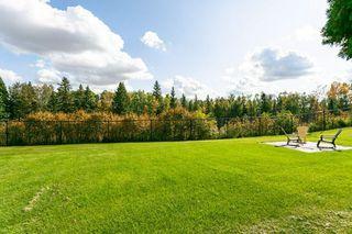 Photo 29: 3441 199 Street in Edmonton: Zone 57 House for sale : MLS®# E4174519