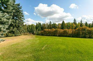 Photo 27: 3441 199 Street in Edmonton: Zone 57 House for sale : MLS®# E4174519