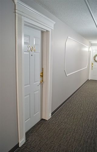 Photo 27: 204 10320 113 Street in Edmonton: Zone 12 Condo for sale : MLS®# E4198034