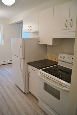 Photo 5: 204 10320 113 Street in Edmonton: Zone 12 Condo for sale : MLS®# E4198034