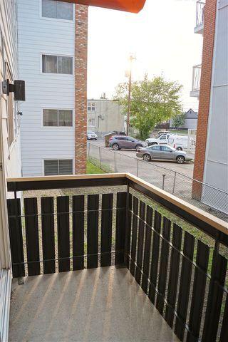 Photo 13: 204 10320 113 Street in Edmonton: Zone 12 Condo for sale : MLS®# E4198034