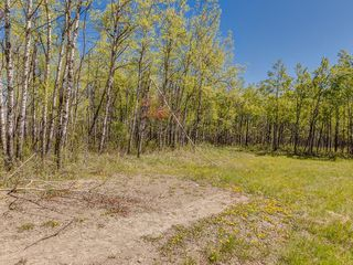 Photo 23: 88045 198 Avenue W: Rural Foothills County Land for sale : MLS®# A1022432