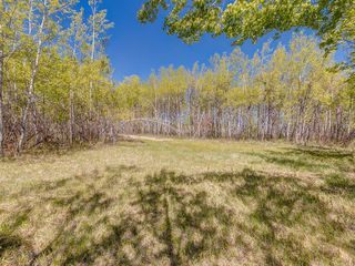 Photo 24: 88045 198 Avenue W: Rural Foothills County Land for sale : MLS®# A1022432
