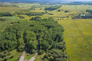 Photo 4: 88045 198 Avenue W: Rural Foothills County Land for sale : MLS®# A1022432