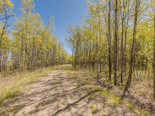 Photo 21: 88045 198 Avenue W: Rural Foothills County Land for sale : MLS®# A1022432