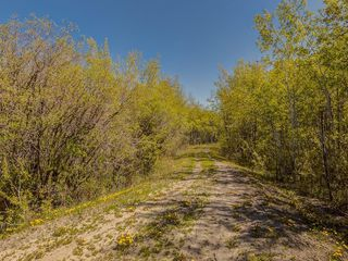 Photo 19: 88045 198 Avenue W: Rural Foothills County Land for sale : MLS®# A1022432