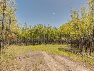 Photo 22: 88045 198 Avenue W: Rural Foothills County Land for sale : MLS®# A1022432