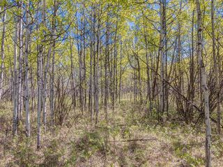 Photo 25: 88045 198 Avenue W: Rural Foothills County Land for sale : MLS®# A1022432