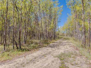 Photo 28: 88045 198 Avenue W: Rural Foothills County Land for sale : MLS®# A1022432