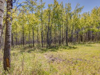 Photo 27: 88045 198 Avenue W: Rural Foothills County Land for sale : MLS®# A1022432