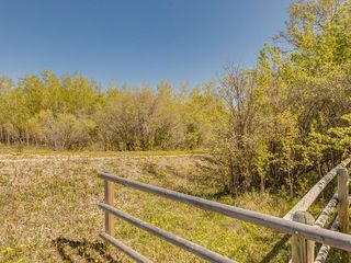 Photo 17: 88045 198 Avenue W: Rural Foothills County Land for sale : MLS®# A1022432