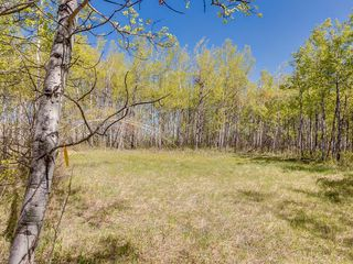 Photo 26: 88045 198 Avenue W: Rural Foothills County Land for sale : MLS®# A1022432