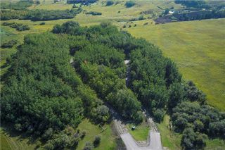 Photo 5: 88045 198 Avenue W: Rural Foothills County Land for sale : MLS®# A1022432