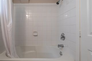 Photo 34: 3055 ASH Street in Abbotsford: Central Abbotsford House for sale : MLS®# R2496526