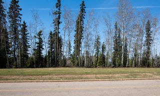 Photo 2: 941 Timberline Drive: Fort McMurray Detached for sale : MLS®# A1041874