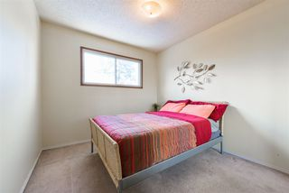 Photo 29: 2432 117 Street in Edmonton: Zone 16 House for sale : MLS®# E4220630