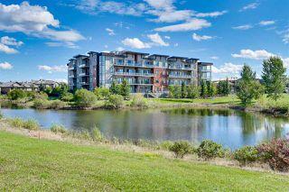 Photo 49: 204 4042 MACTAGGART Drive in Edmonton: Zone 14 Condo for sale : MLS®# E4224427