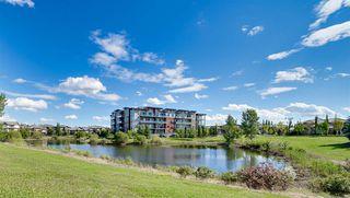 Photo 47: 204 4042 MACTAGGART Drive in Edmonton: Zone 14 Condo for sale : MLS®# E4224427