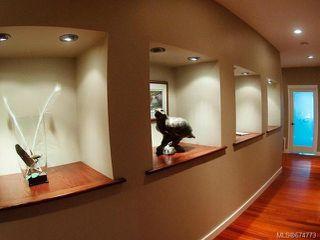 Photo 7: 3321 Arrowsmith Rd in NANAIMO: Na Uplands House for sale (Nanaimo)  : MLS®# 674773