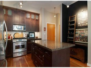 "Photo 2: 106 250 SALTER Street in New Westminster: Queensborough Condo for sale in ""PADDLER'S LANDING"" : MLS®# V1072840"