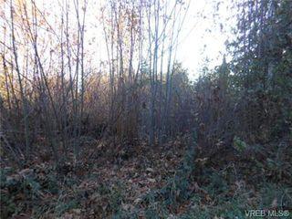 Photo 10: 2395 Mt. St. Michael Rd in SAANICHTON: CS Saanichton Land for sale (Central Saanich)  : MLS®# 686754