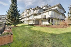 "Photo 16: 103 12160 80 Avenue in Surrey: West Newton Condo for sale in ""La Costa Green"" : MLS®# R2062778"