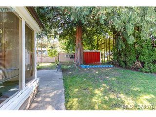 Photo 12: 52 2911 Sooke Lake Road in VICTORIA: La Goldstream Manu Double-Wide for sale (Langford)  : MLS®# 378578