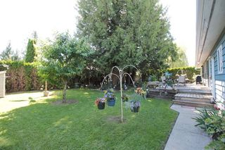 """Photo 15: 21644 44A Avenue in Langley: Murrayville House for sale in """"Murrayville"""" : MLS®# R2182723"""