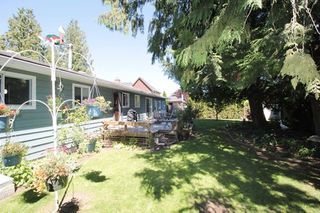 """Photo 16: 21644 44A Avenue in Langley: Murrayville House for sale in """"Murrayville"""" : MLS®# R2182723"""