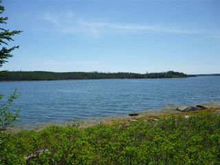 Photo 8: - Little Liscomb Road in Little Liscomb: 303-Guysborough County Vacant Land for sale (Highland Region)  : MLS®# 201728127