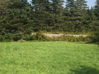Photo 14: - Little Liscomb Road in Little Liscomb: 303-Guysborough County Vacant Land for sale (Highland Region)  : MLS®# 201728127