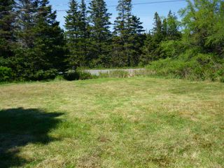 Photo 13: - Little Liscomb Road in Little Liscomb: 303-Guysborough County Vacant Land for sale (Highland Region)  : MLS®# 201728127