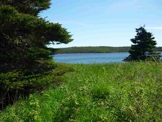 Photo 12: - Little Liscomb Road in Little Liscomb: 303-Guysborough County Vacant Land for sale (Highland Region)  : MLS®# 201728127