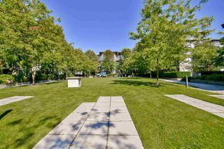 """Photo 19: 427 15918 26 Avenue in Surrey: Grandview Surrey Condo for sale in """"The Morgan"""" (South Surrey White Rock)  : MLS®# R2242399"""