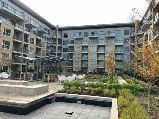 Photo 11: 503 5311 CEDARBRIDGE Way in Richmond: Brighouse Condo for sale : MLS®# R2259170