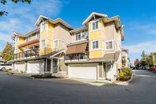 "Main Photo: 45 6036 164 Street in Surrey: Cloverdale BC Townhouse for sale in ""Arbour Village"" (Cloverdale)  : MLS®# R2308185"