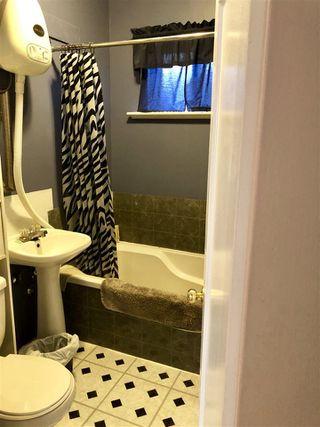 Photo 9: 11128 97 Street in Edmonton: Zone 08 House for sale : MLS®# E4144741