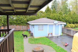 Photo 18: 21123 GLENWOOD Avenue in Maple Ridge: Northwest Maple Ridge House for sale : MLS®# R2360520
