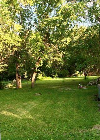 Photo 13: 50 Arden Avenue East in Winnipeg: St Vital Residential for sale (2C)  : MLS®# 1909047