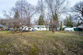 Photo 11: 50 Arden Avenue East in Winnipeg: St Vital Residential for sale (2C)  : MLS®# 1909047